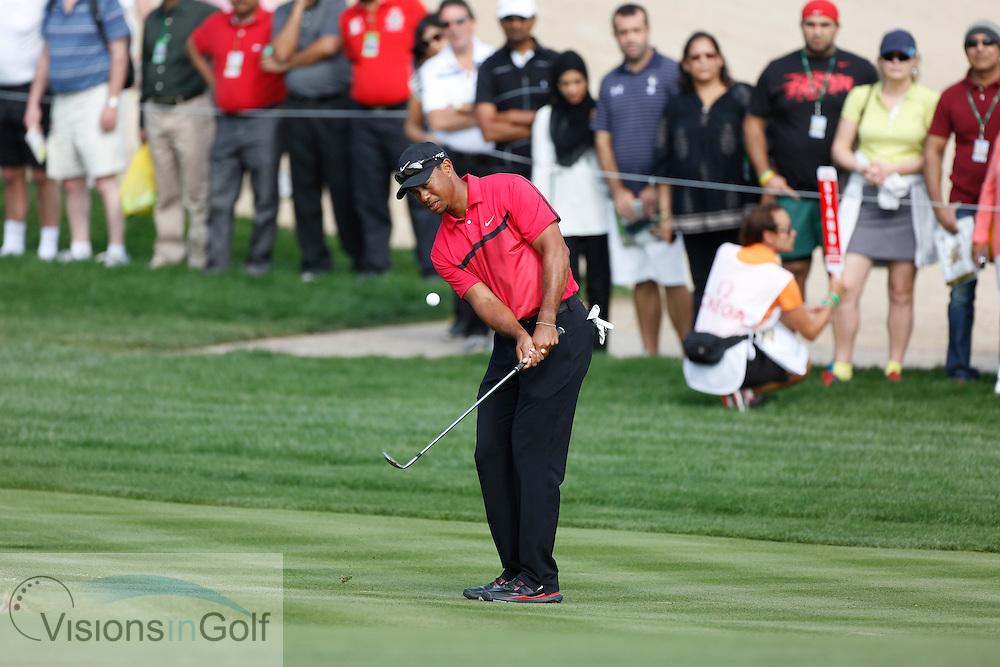 Tiger Woods<br /> Omega Dubai Desert Classic, Emirates GC, UAE, January 2014<br /> Picture Credit:  Mark Newcombe / www.visionsingolf.com