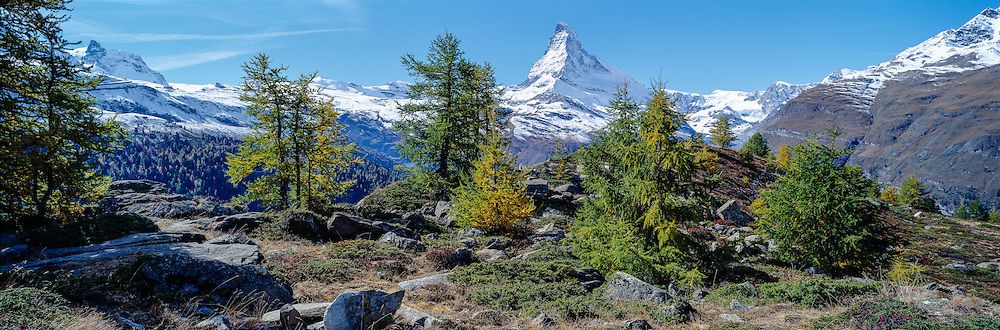 The Matterhorn in the canton of Wallis, larches in autumn, panoramic, symbol and landmark of Switzerland