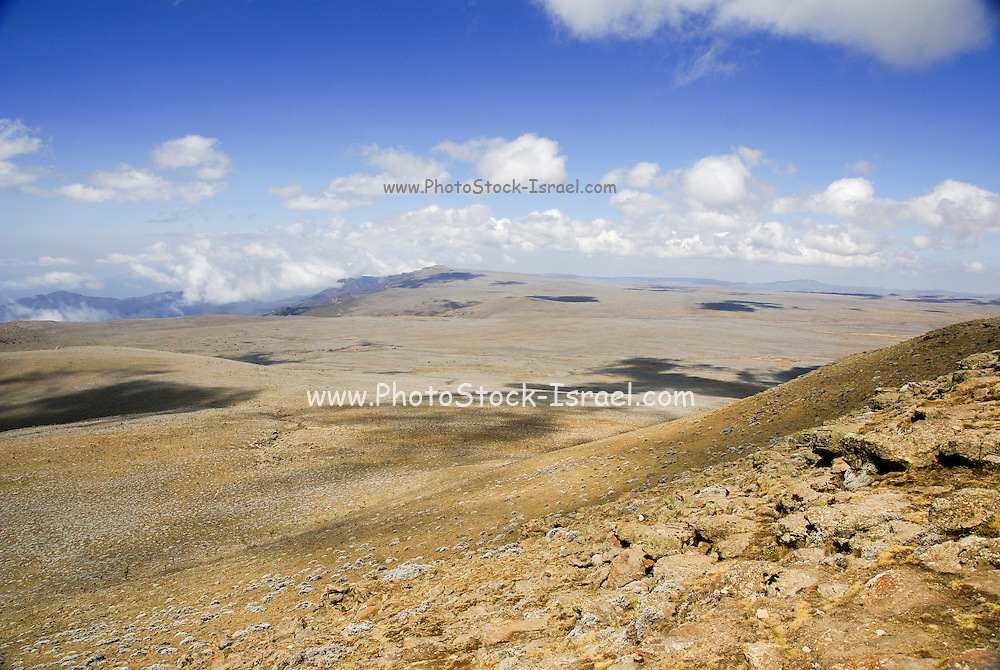 Africa, Ethiopia, Oromia Region, Bale Mountains