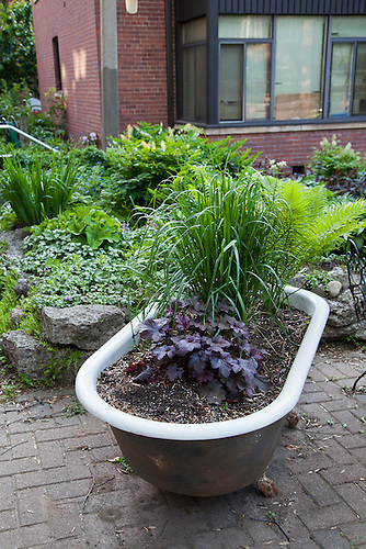 Lovely A Cast Iron Bathtub Turned Into A Planter For Ornamental Grasses And  Perennial Heuchera.