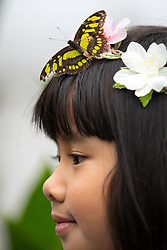 © Licensed to London News Pictures. 28/03/2018. London, UK. A butterfly lands on the head of Ruhi Samir, aged 8, at the 'Sensational Butterflies' exhibition at the Natural History Museum, returning for it's tenth year. Photo credit : Tom Nicholson/LNP