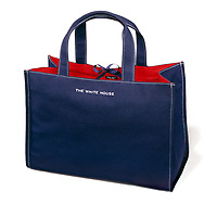 Kate Spade The White House bag on white background