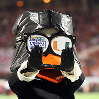 Miami mascot Sebastian give the team gesture on the field during the NCAA Football Russell Athletic Bowl football game between the Louisville Cardinals and the Miami Hurricanes, at the Florida Citrus Bowl on Saturday, December 28, 2013 in Orlando, Florida. Louisville won the game by a score of 36-9. (AP Photo/Alex Menendez)