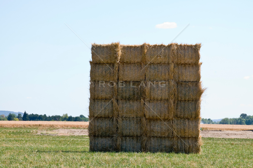 Stacks of Hay on a sunny day in Portland, OR