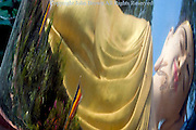 The distorted face of a large reclining Buddha statue is reflected in a large silver bowl at a Buddhist Temple in Tboung Khmum Province, Cambodia.