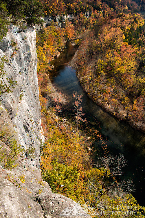 Fall colors from a trail high above the Buffalo National River, Arkansas.