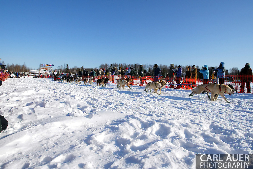 3/4/2007:  Willow, Alaska -  Veteran Mike Williams of Akiak, AK heads for Nome in the 35th Iditarod Sled Dog Race