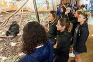 29-08-2018 visita cabarceno selección femenina