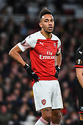 Arsenal Forward Pierre-Emerick Aubameyang (14) during the Europa League round of 16, leg 2 of 2 match between Arsenal and Rennes at the Emirates Stadium, London, England on 14 March 2019.