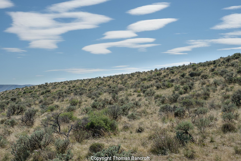 Clouds over the Sagebrush Plains of the Ginkgo Petrified State Forest.