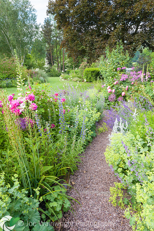 The Rose Walk, filled with fragrant roses and colourful herbaceous plants at Dorothy Clive Garden, Staffordshire‬. Photographed in June.