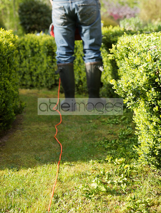 Back view of a gardener pruning a hedge with electrical trimmer, headless