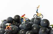 Little world is the creation of Photographer Chris Willemsen, who creates these eye catching situations around everyday objects using children's toys<br /> <br /> Photo shows: toy puppets cycle racing to the top<br /> ©Exclusivepix Media