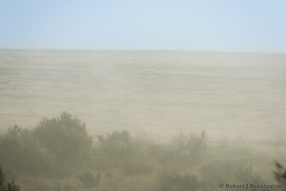 Farmland is eroded by high winds, forming dust clouds.