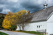 White barn along a autumn country road, Shaftsbury, Vermont, USA.