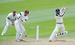 Yorkshire's Adil Rashid cuts the ball. Photo mandatory by-line: Harry Trump/JMP - Mobile: 07966 386802 - 27/05/15 - SPORT - CRICKET - LVCC County Championship - Division 1 - Day 4 - Somerset v Yorkshire - The County Ground, Taunton, England.