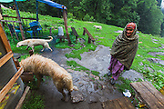 A local lady enters a small food joint on the way to Kheerganga in Parvati valley in Kullu, Himachal Pradesh, India