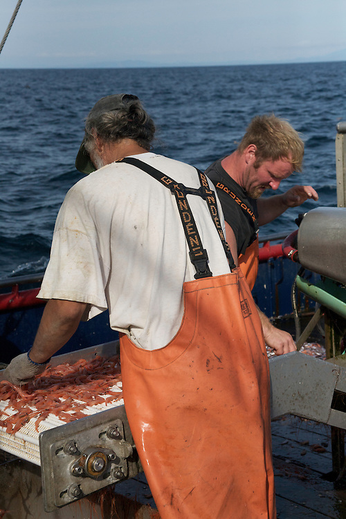 The Lady Kaye, Oregon is on of the United States first susatinable shrimp fishiries