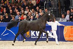 500 -<br /> KWPN Stallion Selection - 's Hertogenbosch 2014<br /> © Dirk Caremans