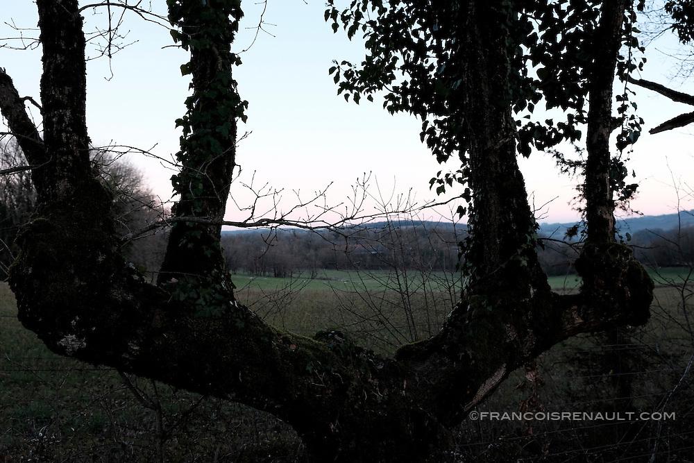 Paysage du Lot en hiver, France.