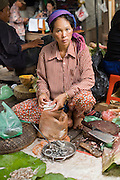 14 MARCH 2006 - PHNOM PENH, CAMBODIA: A woman who sells fish in the market in Phnom Penh, Cambodia. Many people in Cambodia don't have refrigerators and shop for meat and produce almost every day. PHOTO BY JACK KURTZ