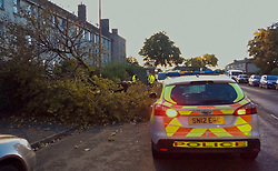 Pictured: Police were on hand to control traffic on Edinburgh's Craigentinny Road tonight as a large tree was felled and cut up<br /> <br /> <br /> Chris McCluskie| EEm 11 September 2017
