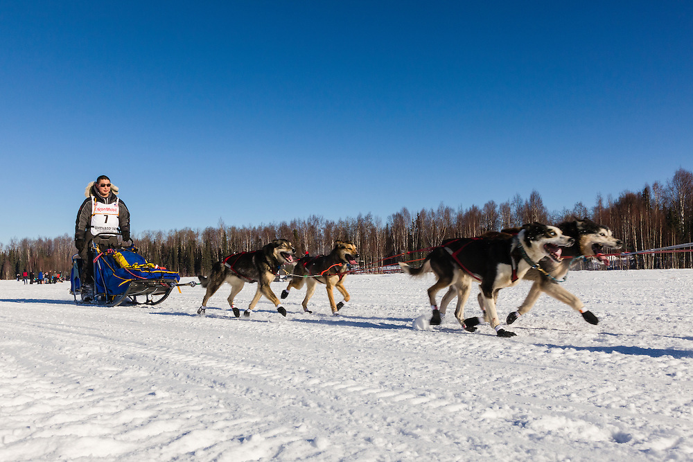 Musher Michael Williams Jr. competing in the 42nd Iditarod Trail Sled Dog Race on Long Lake after leaving the restart on Willow Lake in Southcentral Alaska.  Afternoon. Winter.
