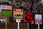 "Four estate agent's property boards advertise their names and numbers in a London housing estate, each representing vendors selling their houses and flats for a set commission in the housing market. Above the signs is the pink blossom from a cherry tree whose branches hang over the temporary information boards. The term originally referred to a person responsible for managing a landed estate, while those engaged in the buying and selling of homes were ""House Agents"", and those selling land were ""Land Agents"". However, in the 20th century, ""Estate Agent"" started to be used as a generic term, perhaps because it was thought to sound more impressive. Estate agent is roughly synonymous in the United States with the term real estate broker."