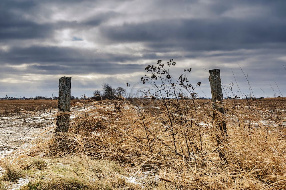 Remnants of chain-link fence in a field