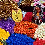 Tulips in flower market..Amsterdam, Holland.