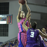 Delaware Forward Elena Delle Donne (11) shoots the ball over James Madison Forward Toia Giggetts (3) in the first half of a regular season NCAA basketball game against James Madison Sunday, Feb 24, 2013 at the Bob Carpenter Center in Newark Delaware...