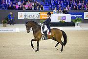 Ceylan Avinal - Zygrande le Coupied<br /> Indoor Brabant 2016<br /> © DigiShots