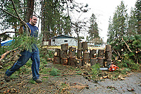 Steve Pedersen carries broken branches from a fallen tree Tuesday after he sectioned the log to clear his neighbor's driveway in Coeur d'Alene. High winds caused the top of the tree to snap, blocking the driveway.