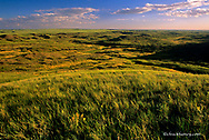 Bitter Creek Wilderness Area in Valley county, Montana, USA