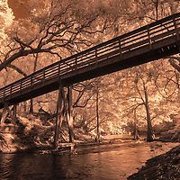 Infrared photo of bridge along Suwannee River, Florida