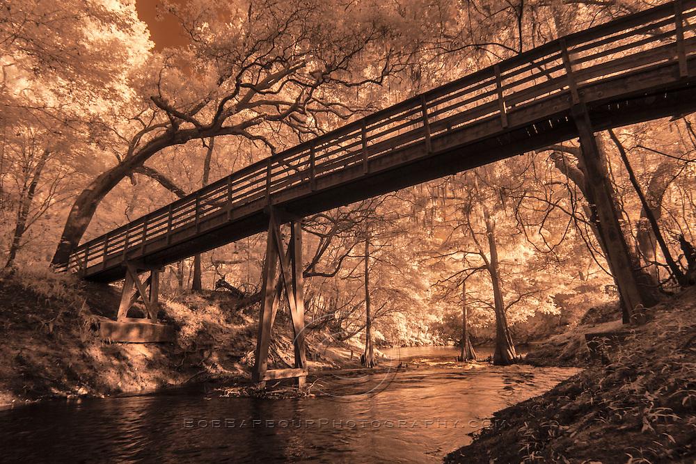 Infrared photo of bridge along Suwannee River, Florida