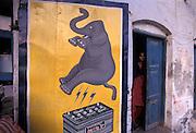 Battery advertisement, Udaipur, Rajasthan