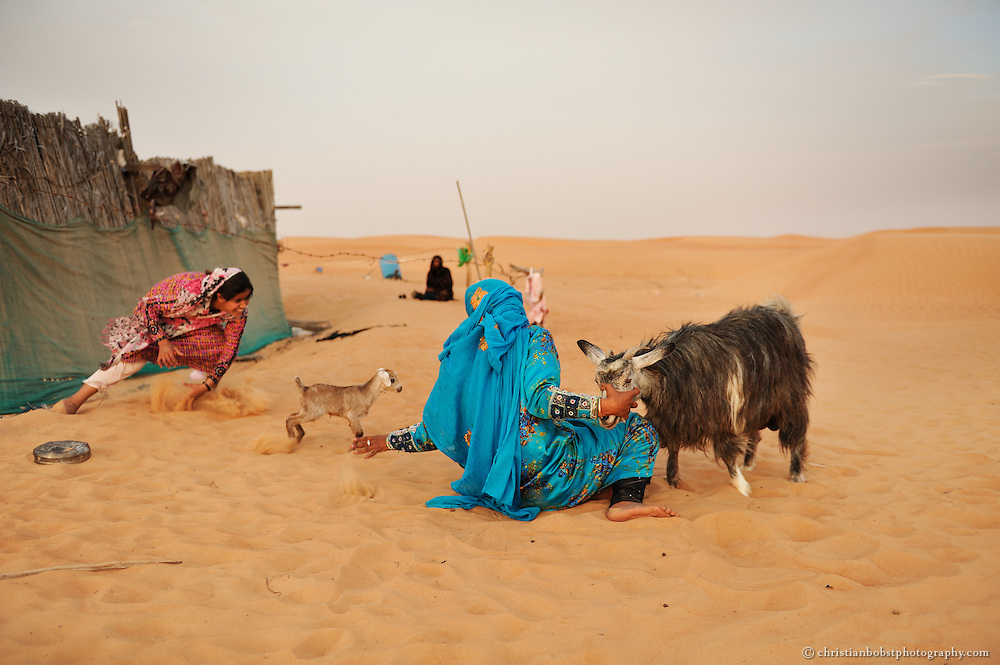 Beduin girls milking goats in the desert of Wahiba sands, Oman, 2011