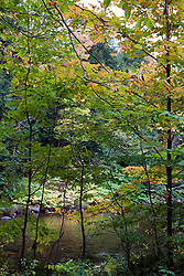 Early fall color graces the banks of the Lamoille River, near Belvidere, Vermont.