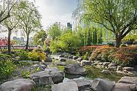 scenic view of gucheng park Shanghai popular republic of China