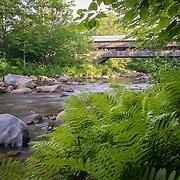 Summertime near the Jackson Covered Bridge