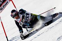 ALPINE SKIING - WORLD CUP 2010/2011 - Val d'Isere Fra - 11/12/2010 - PHOTO : GERARD BERTHOUD / DPPI - MEN GIANT SLALOM - Aksel Lund SVINDAL (NOR) / 2ND