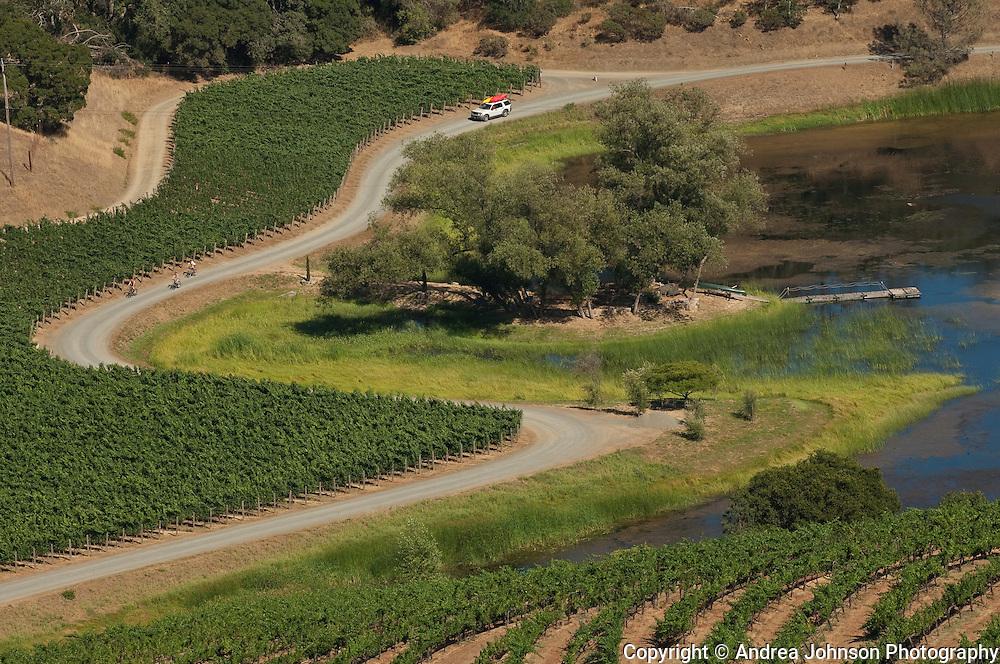 Somerston Wines, Napa, California