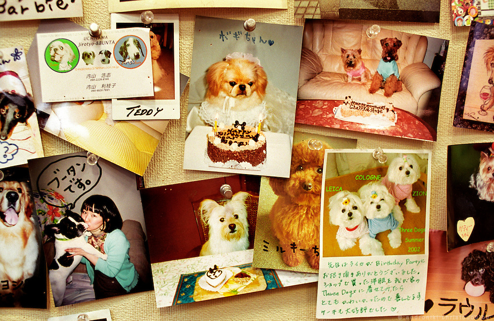 "Photos from dogs' birthdays, pinned on a special board in the ""Three Dog Bakery"" in Tokyo.The bakery produces cakes, bisquits and sweets only for dogs..Tokyo April 2004"