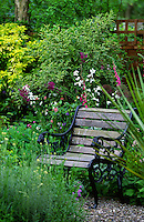 bench in well planted garden with lots of foliage