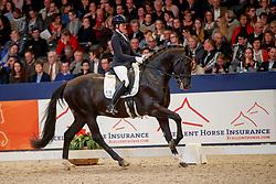 Janssen Danique, NED, Indigro<br /> KWPN Stallionshow - 's Hertogenbosch 2018<br /> © Hippo Foto - Dirk Caremans<br /> 02/02/2018