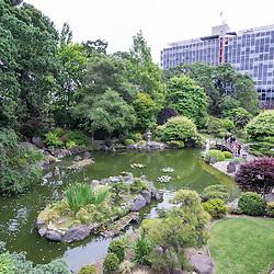 Japanese Tea Garden, San Mateo