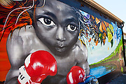 Graffiti art by Sheepman behind Buffalo South in James Island, Charleston, South Carolina.