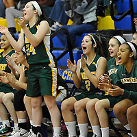 2.19.2011 Amherst at Clearview  Girls Varsity Basketball
