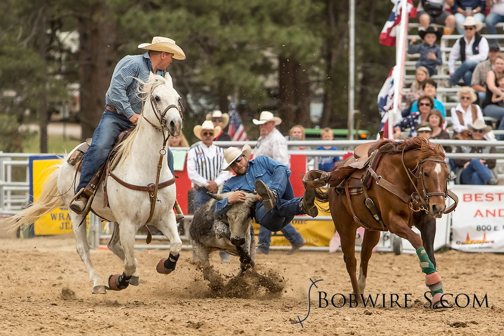 Brian Snell makes his steer wrestling run during the third performance of the Elizabeth Stampede on Sunday, June 3, 2018.